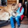 Egy árva kis medvét vesz magához a férfi. 23 év múlva hihetetlen életet élnek együtt!
