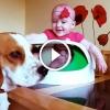 Ezért jó, ha egy baba kutya mellett nő fel – Imádni való kisfilm!