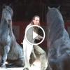 Férfi és fríz lovai gyönyörű produkciója – Csodaszép, nézd meg!