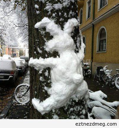Ugribugri felkenődött a fára...